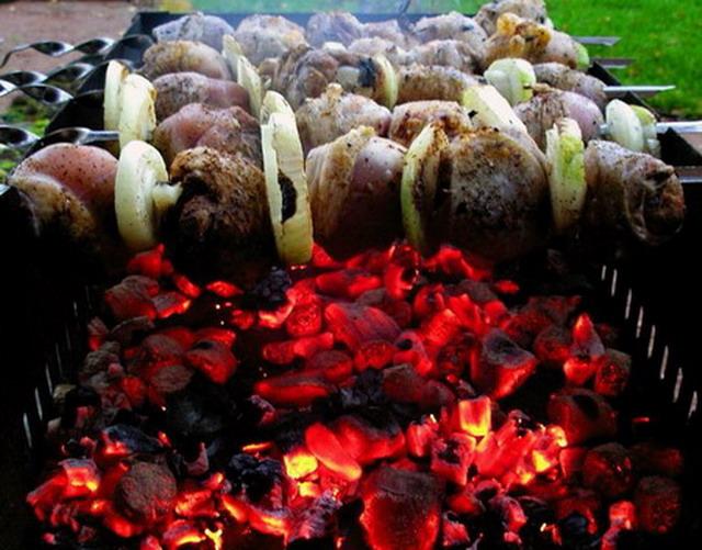 угли,шашлык,мясо,шампур,лоза,деревья,дрова,жар,бревна