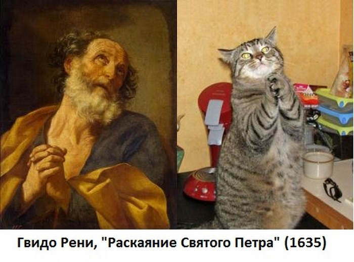 http://tomatoz.ru/uploads/posts/2012-11/1352628097_414_1352570402_kartina_11.jpg