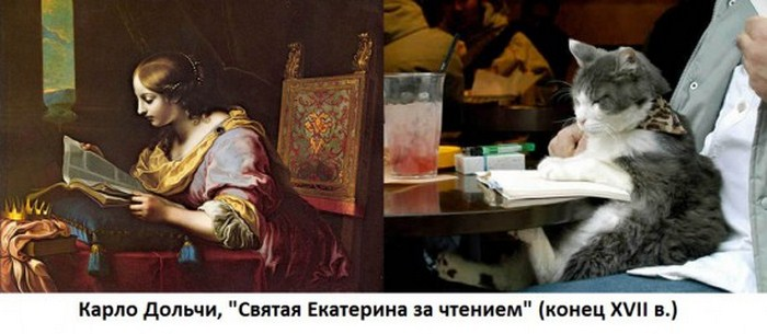 http://tomatoz.ru/uploads/posts/2012-11/1352628169_414_1352570390_kartina_4.jpg