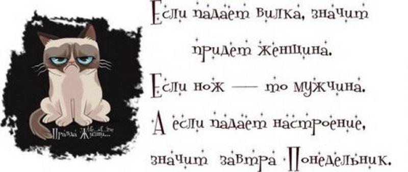 http://tomatoz.ru/uploads/posts/2013-04/1367054135_1366044886_eygwkiiuuba_resize.jpg