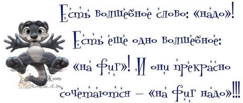 http://tomatoz.ru/uploads/posts/2013-07/1374257190_original19_resize.jpg