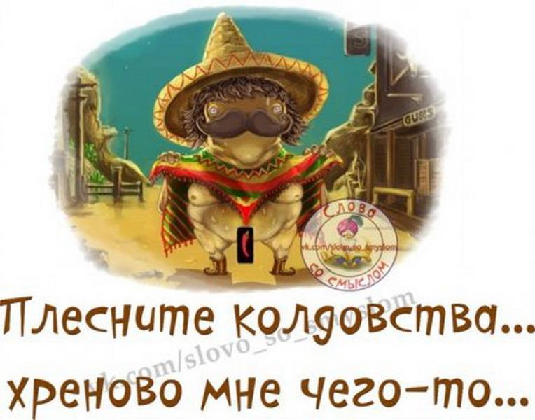 http://tomatoz.ru/uploads/posts/2013-09/1379249460_1379151435_z2g02nwqfai_resize.jpg